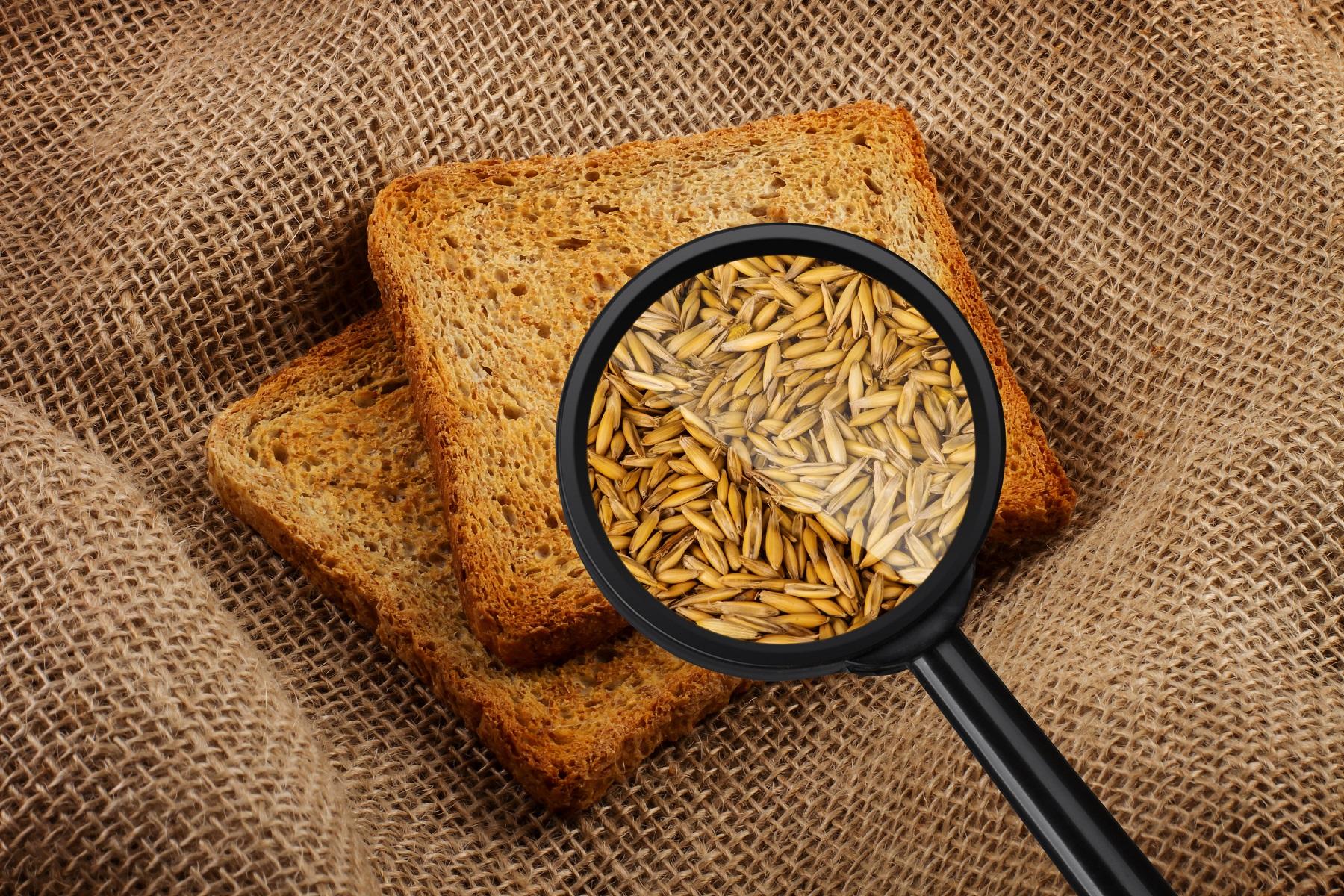 Vergrootglas brood