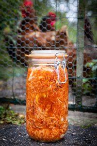 fermentatie-pot