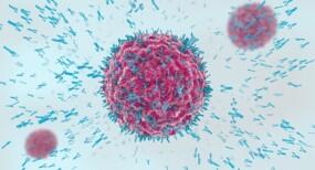 https://www.mlds.nl/content/uploads/virus-aangevallen-immuunreactie-verkleind-2048x1152-2-285x154.jpg